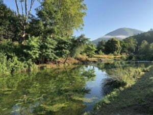 vissen in de rivier camping Rennes-les-Bains